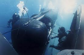 Seal sub